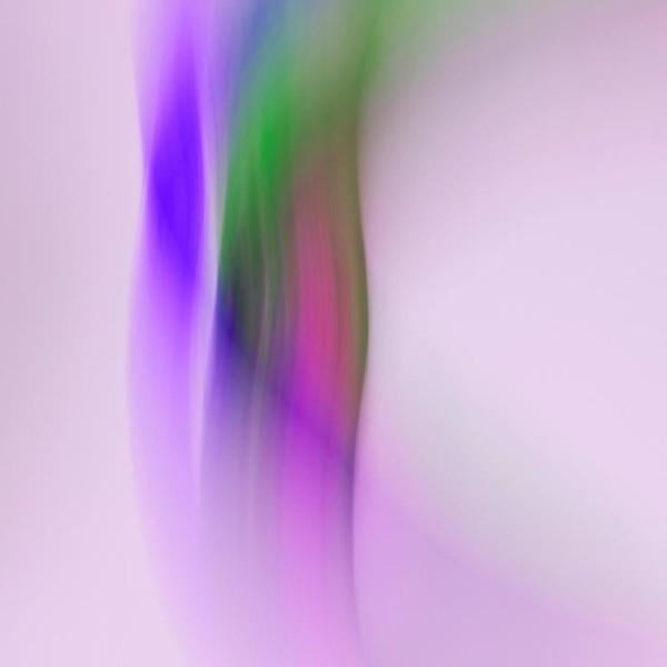 シャンタンアート 36