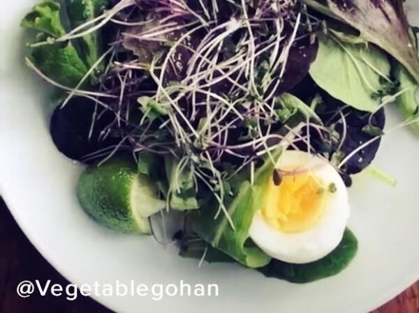 vegetablegohan